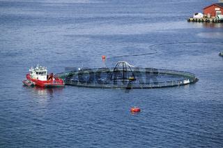 Fischfarm