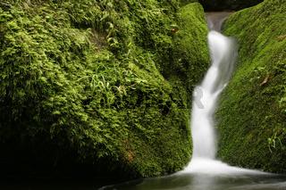 Baden-Wuerttemberg, Nord-Schwarzwald, Monbachtal, Wasserfall, waterfall, germany, europe