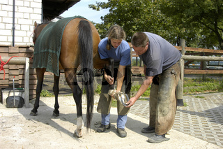 Hufschmied, Farrier, Shoeing Smith
