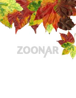 Herbst Hintergrund Karte