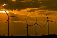 Windkrafträder im Sonnenuntergang