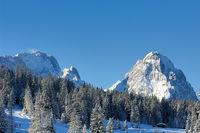 Zugspitze und Waxensteine vom Hausberg