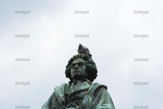 Beethoven mit Taube