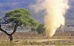 sandsturm, windrose, etosha nationalpark etosha pfanne, national park, namibia, africa