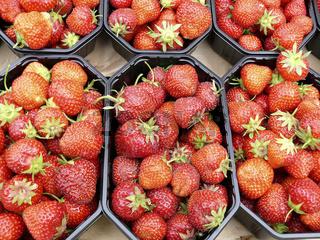 Erdbeeren am Marktstand