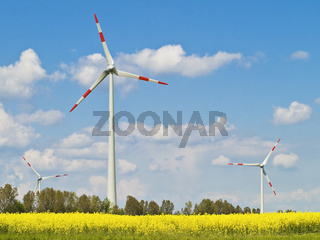 erneuerbare Energie | renewable energy