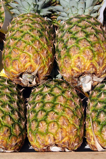 Pineapples | Ananas