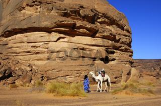 Tuareg, Reitkamel