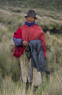 Indio in den Anden