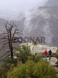 Grand Canyon im Nebel, Arizona, USA