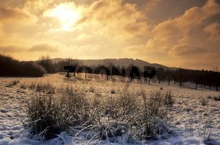 Winterlandschaft Schwaebische Alb, Deutschland, Baden-Wuerttemberg, Germany