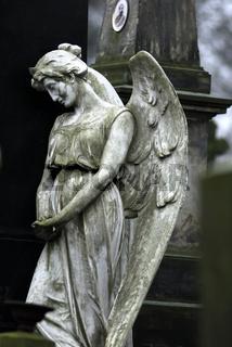 Engel, Friedhof in Warschau, cemetery in Warsaw