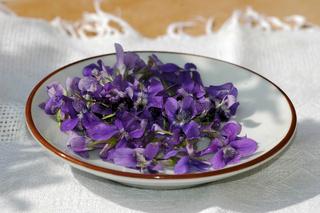 Essbare Blüten Veilchen