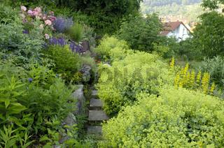 Garden path   Gartenweg