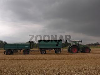 Weizenernte Traktor