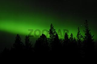 Nordlicht (Aurora borealis), Norbotten, Schweden, sweden