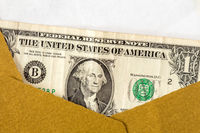 US dollar in an open brown envelope
