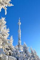 snow-covered winter scenery frosty coldly Ochsenkopf