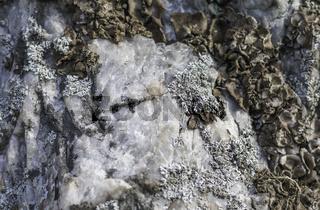 Pleysteiner Pegamtit, Geotop Kreuzberg Pleystein