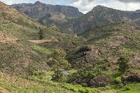 Bach im Gebirge von Tejeda, Gran Canaria