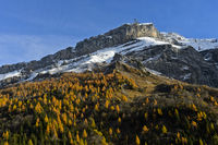 Diablerets massif in autumn colours, Col du Pillon, canton of Vaud, Switzerland