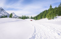 Fresh road through snow in mountains