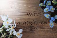 Sunny Crocus And Hyacinth, Wir Gratulieren Means Congratulations