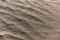 Sand background. Sandy beach texture Macro shot. A lot of Copy space
