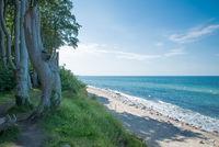 Beach - View