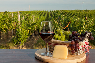 Glass of red wine in front of a vineyard