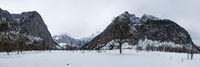 Big Maple Ground in Winter Dress