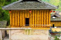 Xijiang Miao Village Corn Hanging House Wall China