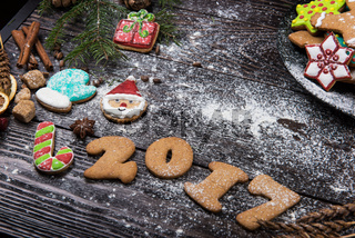 Different ginger cookies 2017 year