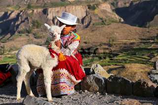 Local girl with baby llama sitting at Colca Canyon in Peru