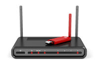 Wireless router and usb wireless adapter