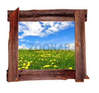 alter Holt Bilderrahmen braun Landschaft Wiese Frühling