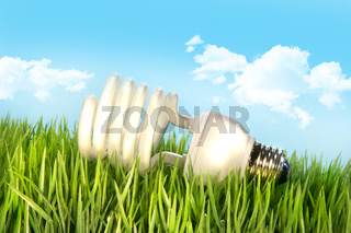 Eco-friendly lighbulb lying in the grass