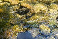 Clear water streaming