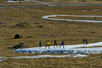 Cross-country skiers practicing on cross-country skiing runs of artificial snow, France