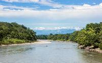 Amazonian rainforest. Napo River. Napo province, Ecuador