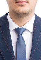 Elegant business suit shirt and necktie closeup