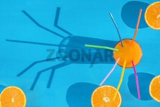 Orange juice and sliced oranges in sunlight