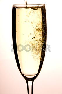 Sektglas - Champangne glasses