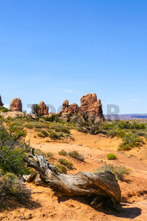 Arches National Park in summer landscape with blue sky