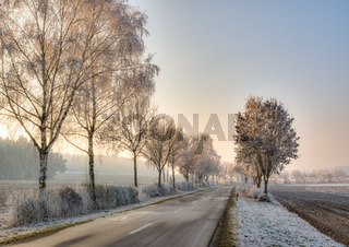Country road in a winter landscape with frosted trees