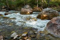 Altai landscape river Ilgumen