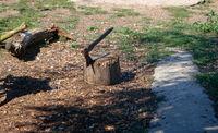 Old axe in stump on the backyard