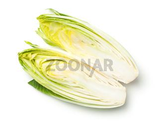 Chicory Isolated on White Background