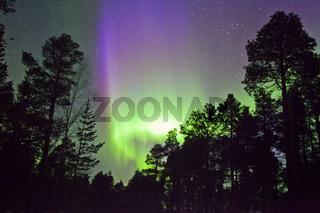 Finnisch Lappland-Inari-grün lila farbenen Aurora Borealis-Nordlichter-Polarlichter