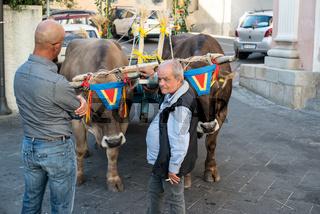 Prozession zu Ehren des Schutzheiligen der Bauern  St. Isidoro, Dorgali Sardinien